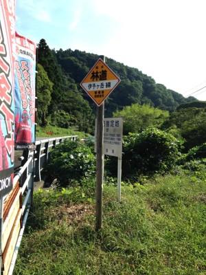 伊予ヶ岳線林道標