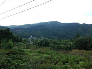 嶺岡中央林道2号線:眺望2