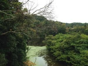 田代林道:笹川湖2