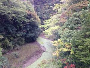 田代林道:笹川湖1