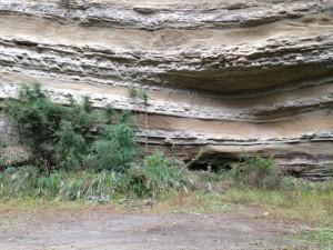 加茂線:奇岩1