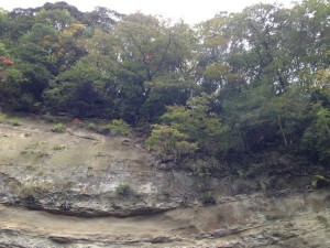 加茂線:奇岩2