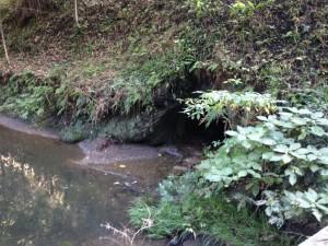 小松寺:川廻し
