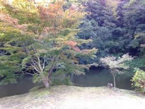 小松寺:池1