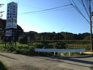 山倉線:終点周辺