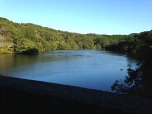 作名ダム:湖面