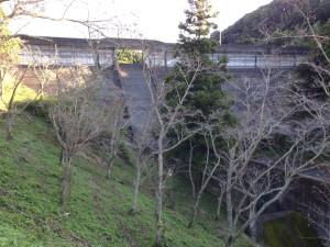 作名ダム:堤体3